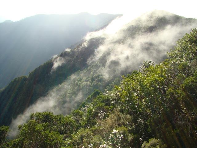 11. Nubes descenciendo montañas