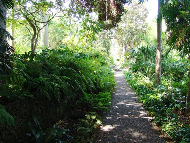 8. Jardín Botánico - Pto Cruz